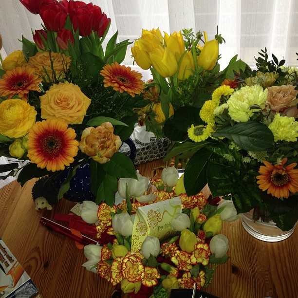 Mein Geburtstags-Blumenmeer --- Ganz lieben Dank an alle Spender!